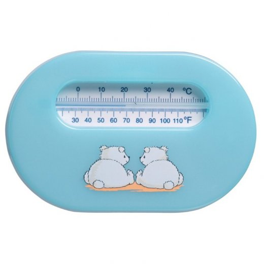 Kambario termometras BLUE BEAR